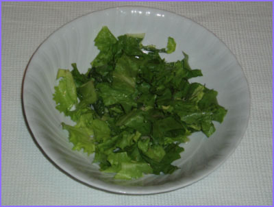 ketogenic diet - green salad